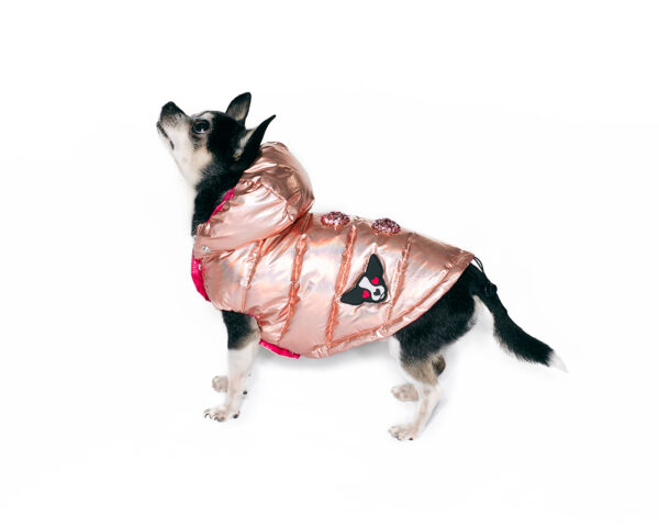 Downjacket with hood and jewel button