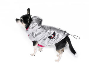 Downjacket with revesible hood
