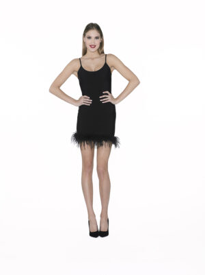 Bandge dress with feather