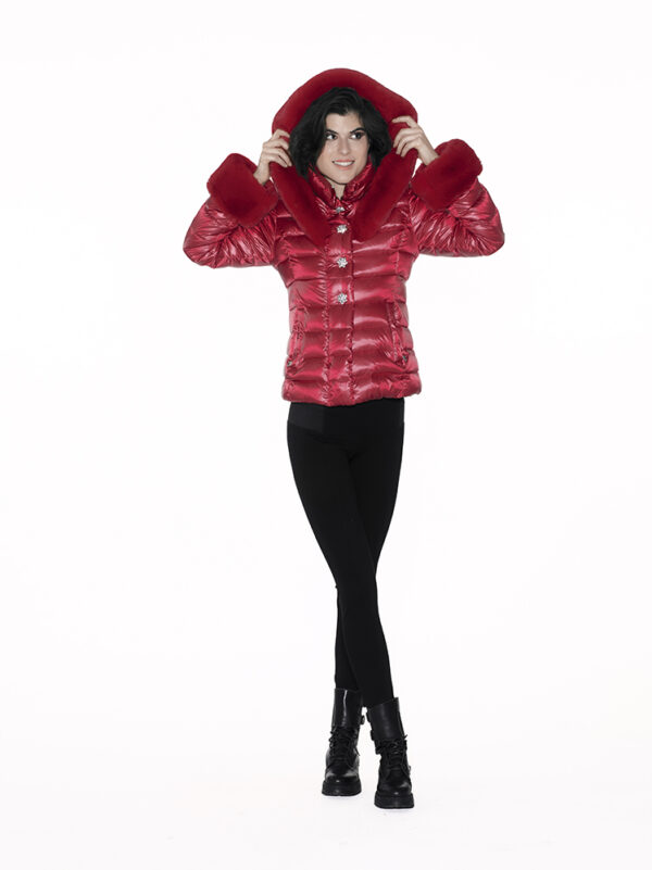 Short single-breasted downjacket with hood