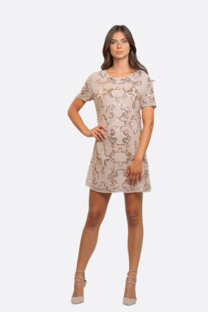 Paillettes Embrodery Dress