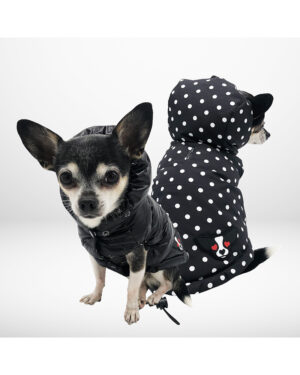 Reversible polka dot down jacket